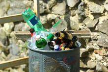 Trash Bin / Garbage Can Overflowing Empty Bottles