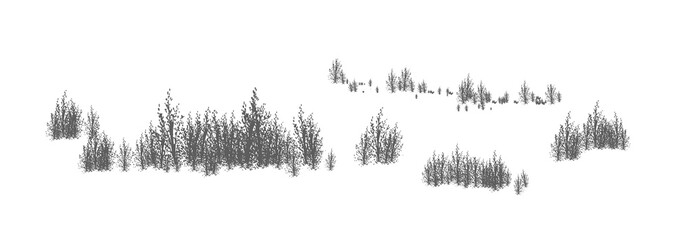 Woody landscape with silhouettes of deciduous trees and shrubs. Horizontal panorama with thicket of forest plants. Decorative design element in black and white colors. Monochrome vector illustration.