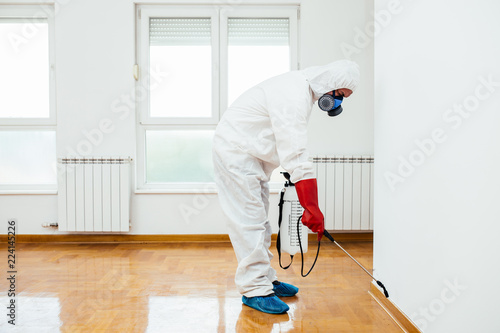 Cuadros en Lienzo Exterminator in work wear spraying pesticide or insecticide with sprayer