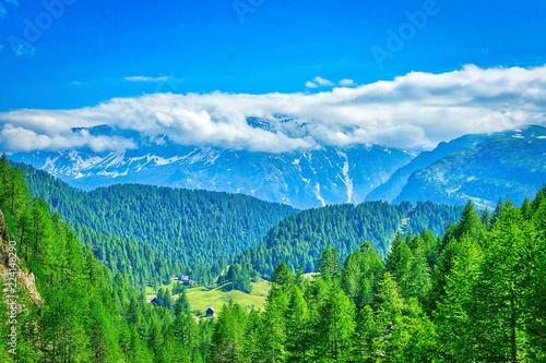 Foto op Canvas Groene Paesaggio alpino