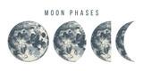 moon phases illustration - 224149874