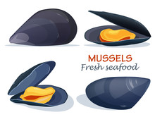 Mussels Fresh Seafood