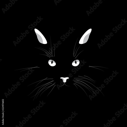 Cat's face in the dark Wallpaper Mural