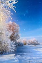 Winter Landscape With Frozen L...