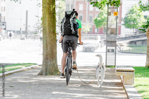 Fotografie, Obraz  a man riding his bicycle with running dog