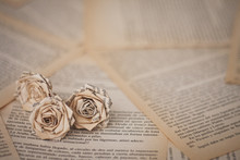 Flowers - Old Book Paper Roses