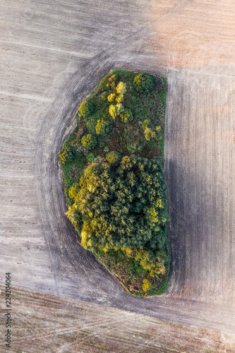 Aerial view forest patch in the middle of plowed field