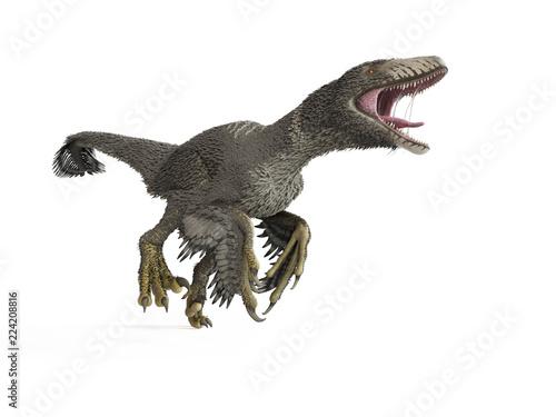 Fototapeta 3d rendered illustration of a dakotaraptor