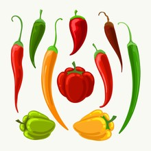 Vector Different Peppers. Jala...