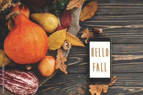 Obraz Hello Fall Text. Hello Autumn sign on phone empty screen and beautiful Pumpkin with bright autumn leaves, acorns, nuts, berries on wooden rustic table, flat lay.  Atmospheric image - fototapety do salonu