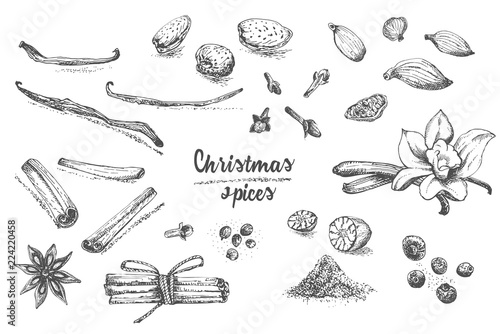 Fototapeta Set of hand drawn Christmas winter spices pattern. Traditionally used in made desserts, hot mulled wine, homemade cookies. obraz