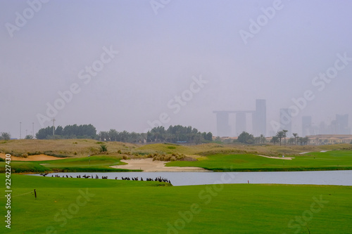 Tuinposter Abu Dhabi Row of Mallard Duck Spectators watching Golf at Saadiyat Golf Course, Saadiyat Island Abu Dhabi