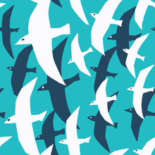 Vector Seamless Pattern With Sea Birds