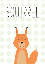 Cute Little Squirrel. Vector Hand Drawn Illustration.