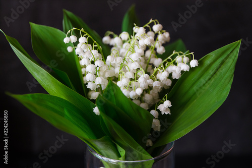 Wall Murals Lilies of the valley in a vase on a dark background