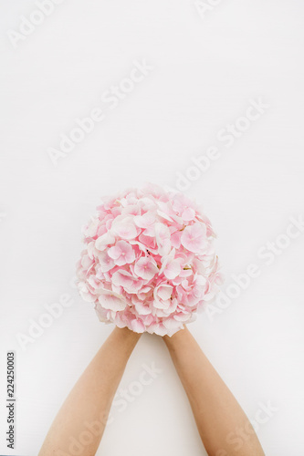 Tuinposter Hydrangea Woman hands hold pink hydrangea flower bouquet on white background. Flat lay, top view floral concept.