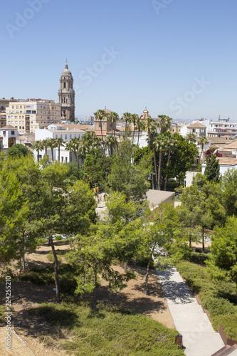 Spoed Foto op Canvas Natuur Malaga downtown from Alcazaba, Spain