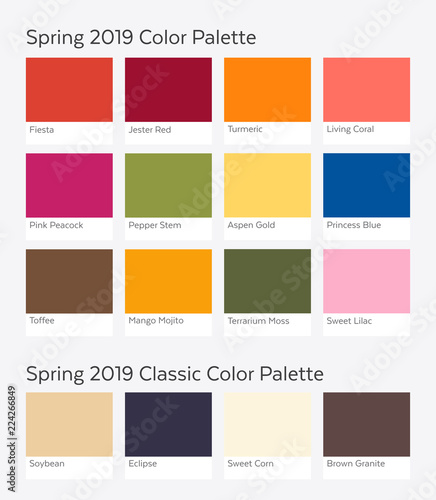 Spring Summer 2019 Color Palette Example Future Color Trend