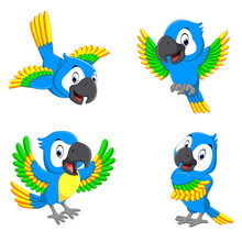 The Collection Of The Blue Parrots With Happy Faces