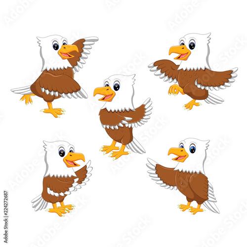Fototapeta premium kolekcja ozdobnego orła w różnych pozach