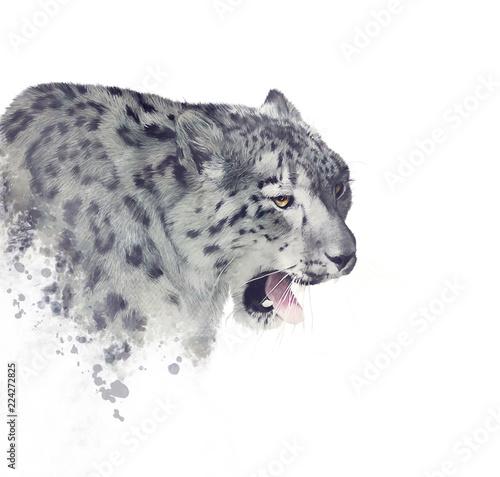 Leopardo de las nieves Pósters en Europosters.es