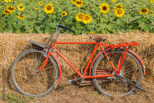Staande foto Fiets Classic red bicycle with sunflower