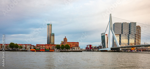 Rotterdam, Netherlands skyline and Erasmus bridge in the afternoon
