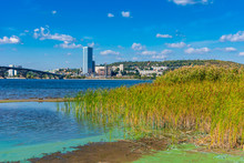 Beautiful Volga Landscape - Sandy Beach With Reeds Opposite Saratov