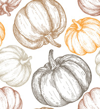 Vector Hand Drawn Sketched Pumpkin Seamless Pattern