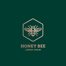 Premium Honey Bee Abstract Vector Sign, Symbol Or Logo Template. Golden Bee Sillhouette With Retro Typography. Creative Insect Emblem.