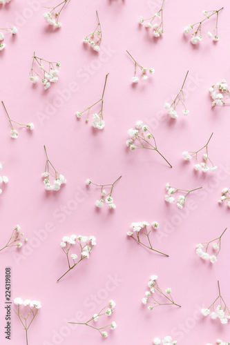 Tuinposter Bloemen Floral pattern made of white gypsophila on a pink pastel background