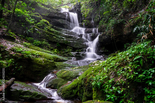 Poster Watervallen waterfall among nature green moss and rock