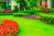 canvas print picture - Green lawn, Landscape formal, front yard is beautifully designed garden.