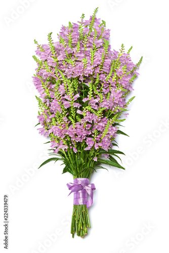 Fotobehang Lilac Beautiful bouquet wild flowers curved shape isolated on white background. Unusual grass. Summer. Spring. Flat lay, top view. Pink. Love. Valentine's Day