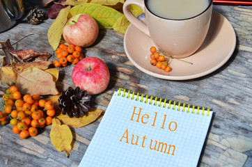 Naklejka na ściany i meble Tag with words hello autumn on the notebook cup of coffee lying on the books with dry yellow maple leaves and everlasting flowers on background