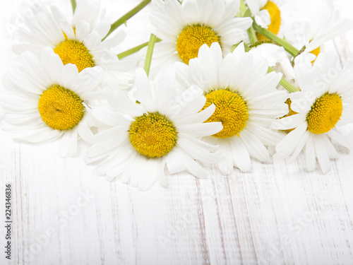 Foto op Canvas Madeliefjes daisy flower on white wooden background, copy space