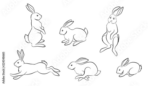 Cuadros en Lienzo Rabbit. Set of different Rabbit and hare figures