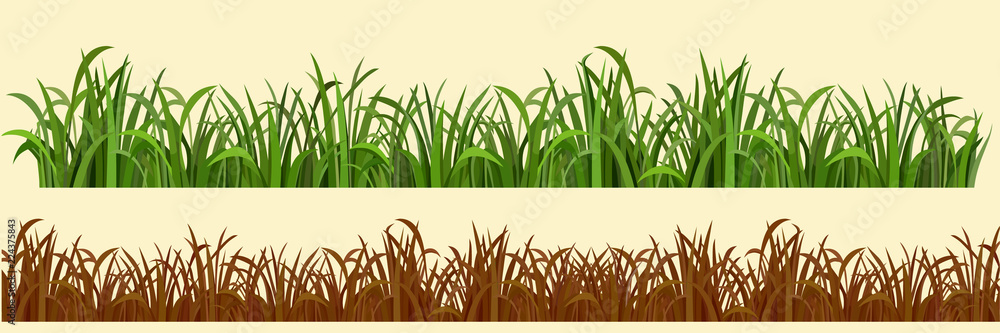 Fototapety, obrazy: cartoon grass in a row in two variations