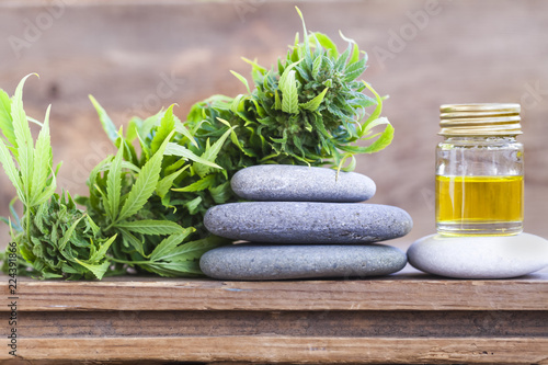 medical cannabis oil Canvas Print