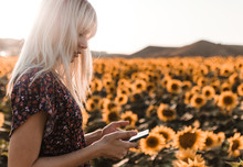 Young Blonde Woman Using Her Mobile Phone In The Middle Of A Field Of Sunflowers In A Sunset Of Summer