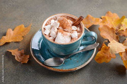 Hot Chocolate with Marshmallows and Autumn Leaves on Stone or Concrete Background