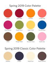 Spring / Summer 2019 Color Pal...