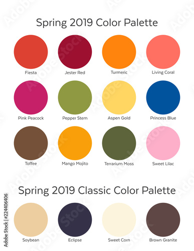 Spring / Summer 2019 Color Palette Example. Future Color ...