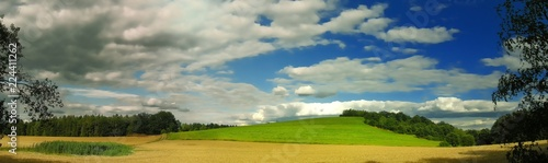 Scenic landscape with fluffy clouds in background over green agriculture fields