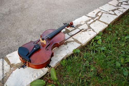 Fotografiet  Musical Instrument Viola