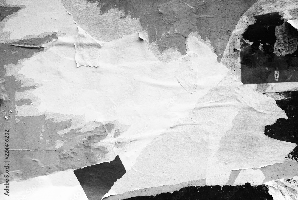 Fototapeta White paper ripped torn background blank creased crumpled posters placard grunge textures surface backdrop / Space for text