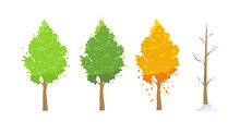 Vector Illustration Of Tree In Different Seasons. Green In Spring And Summer, Red In Autumn, Winter Tree With Snow In Flat Cartoon Style On White Background.