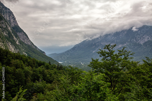 Foto op Aluminium Alpen Alps near the town of bohinj