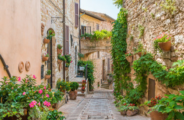 Fototapeta na wymiar Scenic sight in Spello, flowery and picturesque village in Umbria, province of Perugia, Italy.
