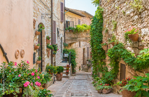 Fototapety, obrazy: Scenic sight in Spello, flowery and picturesque village in Umbria, province of Perugia, Italy.